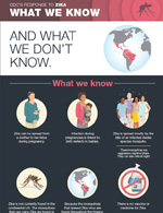 Thumbnail of the infographic: Zika: What we know