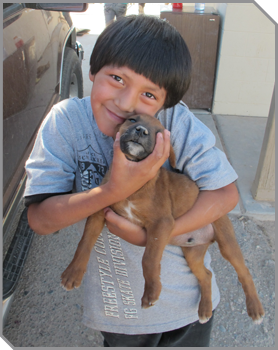 Image of young dark-haired boy holding a dog close to his face and smiling into the camera