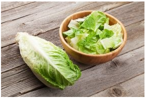 Bowl of Romaine Lettuce