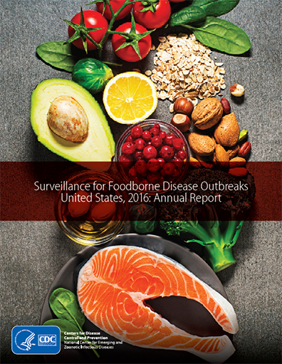 cover of Surveillance for Foodborne Disease Outbreaks