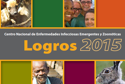 cropped image of pdf: Logros 2015