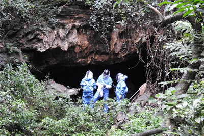 Scientist in Python Cave in Uganda