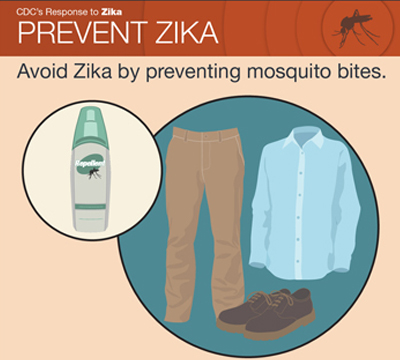 Thumbnail  of zika factsheet showing long clothing and bug spray