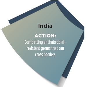 Section of a wheel with words - India ACTION: Combatting antimicrobial resistant germs that can cross borders