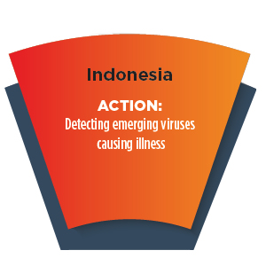 Section of a wheel with words - Indonesia ACTION: Detecting emerging viruses causing illness