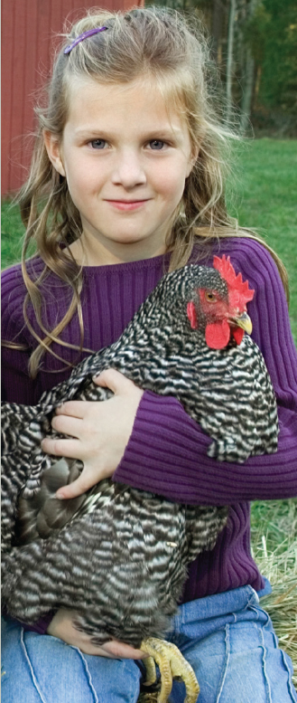 Young girl with long hair in a purple sweater holding a black and white spotted chicken.