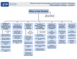 thumbnail image linking to the NCEZID org structure