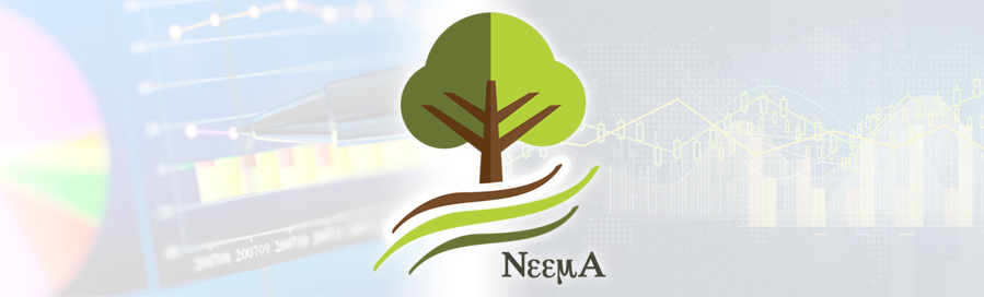 Epidemiologic and Economic Modeling Agreement (NEEMA) logo