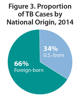 This pie chart shows the proportion of reported TB cases in the United States broken down by national origin in 2014. The proportion of TB cases among foreign-born persons was 66% and 34% among U.S.-born persons.