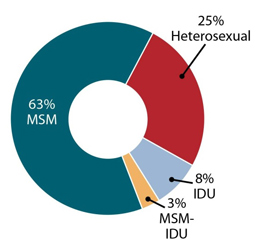 This graphic shows estimated new HIV infections in 2010 by transmission category. Male-to-male sexual contact accounted for 63 percent of new infections; heterosexual contact accounted for 25 percent of new infections; injection drug use (IDU) accounted for 8 percent of new infections; and 3 percent of new HIV infections were among MSM who were also IDUs.
