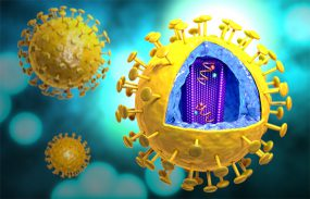 Illustration of the Human Immunodeficiency Virus