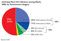 Estimated Number of New HIV Infections among Blacks, 2009, by Transmission Category: This pie chart shows the estimated new HIV infections among African Americans by transmission category for 2009. Men who have sex with men made up 51 percent of new HIV infections followed by heterosexuals who made up 36 percent of new HIV infections (25 percent for heterosexual females and 11 percent for heterosexual males), injection drug users who made up 10 percent of new HIV infections (4 percent for female IDU and 6 percent for male IDU), and MSM-IDU who made up 2 percent of new HIV infections.