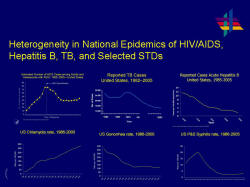 Heterogeneity in National Epidemics of HIV/AIDS, Hepatitis B, TB, and Selected STDs Six line charts showing the heterogeneity within the United States for HIV/AIDS, Hepatitis B, TB and Chlamydia, Gonorrhea, and Syphilis, with Chlamydia showing increasing rates spiking to 35,000,000.