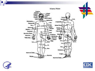 Diagram of human body: PCSI is also like Marma points in yoga, these are energy pathways for healing.