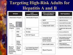 Targeting High-Risk Adults for Hepatitis A and B Flow chart illustrating the process for targeting High-Risk Adults for Hepatitis A and B, including NYSDOH, Local Health Departments, Other Local Agencies and Organizations, Risk Populations