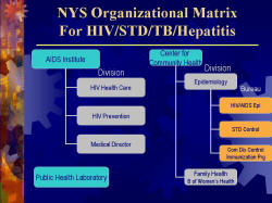 NYS Organizational Matrix For HIV/STD/TB/Hepatitis AIDS Institute - HIV Health Care - HIV Prevention - Medical Director Public Health Laboratory Center for Community Health - Epidemiology - HIV/AIDS Epi - STD Control - Com Dis Control Immunization Prg - Family Health B of Women's Health