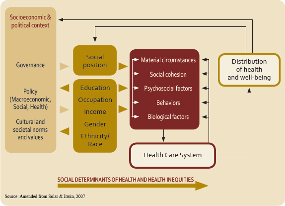 World Health Organization's Social Determinants of Health Framework. Details at http://whqlibdoc.who.int/publications/2008/9789241563703_eng.pdf