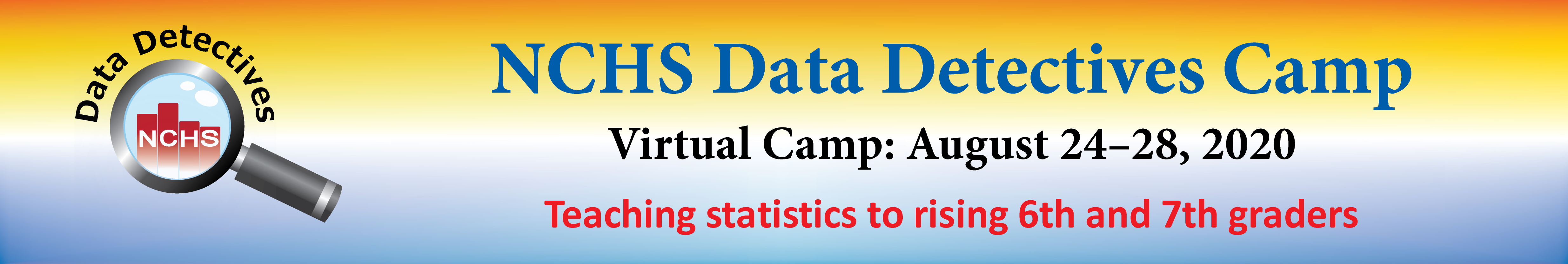 Data Detectives Camp Banner