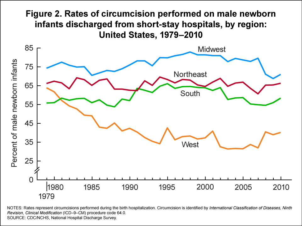 Products - Health E Stats - Trends in Circumcision Among