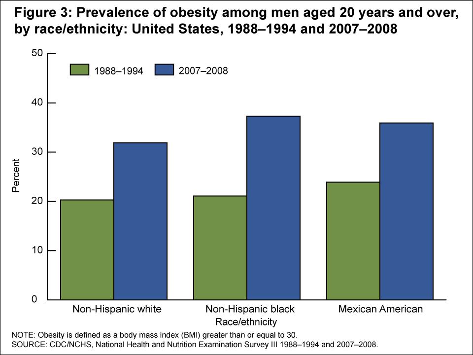 Obesity statistics 2007