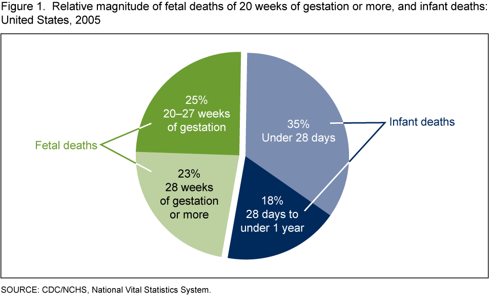 The Challenge of Fetal Mortality