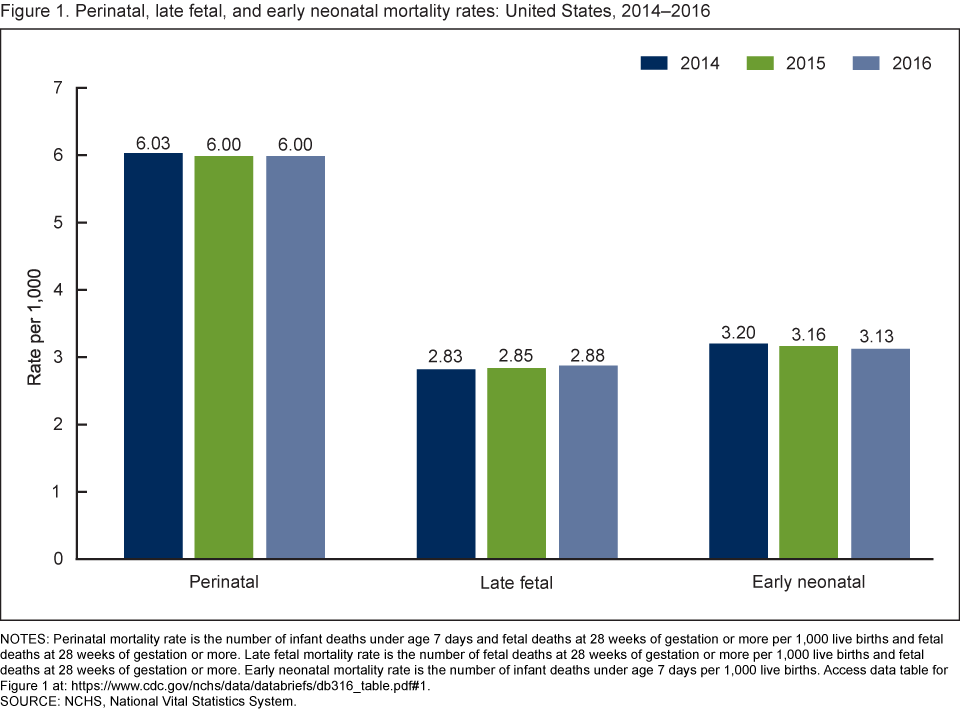 Figure 1 is a bar chart showing perinatal, late fetal, and early neonatal mortality rates for the United States for 2014 through 2016.