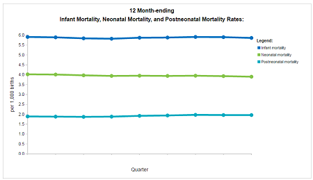 Screenshot, Infant Mortality Dashboard