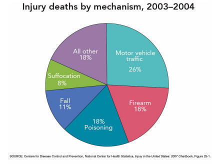 Injury data and resources injury in the united states 2007 chartbook picture of slide 38 as described above ccuart Choice Image
