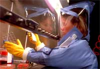 Woman wearing protective equipment in a laboratory