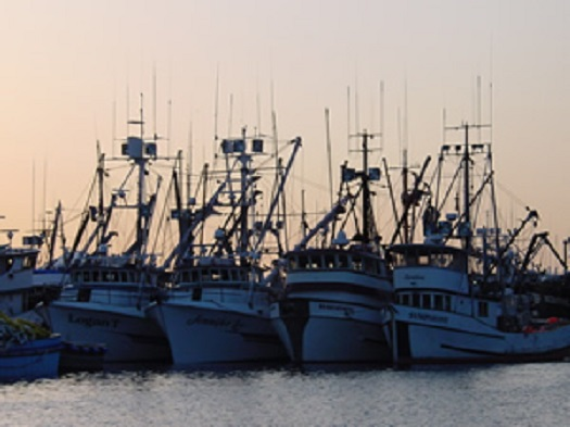 four docked fishing vessels