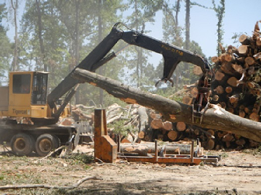 heavy machinery moving large logs from a stack of timber