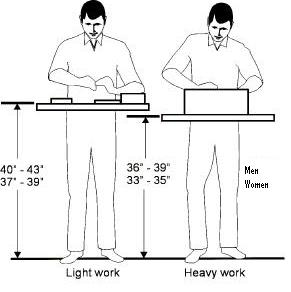 proper standing height for performing hand work, men and women