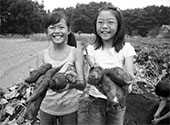 Two Asian-American girls on yam farm.