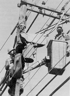 Figure 1. Linemen working near energized power lines covered by insulating blankets and hoses