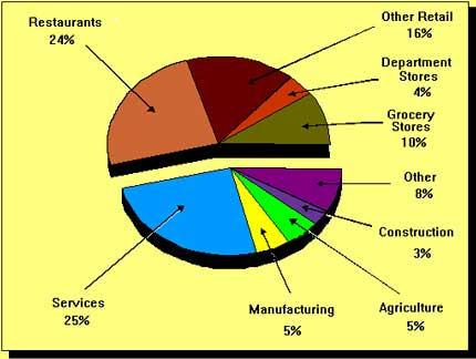Figure 1. Types of jobs held by youths in 1990 - pie chart.
