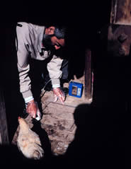 NIOSH physician Mitchell Singal collects a dust sample in a worker's home during a study to help the Pan American Health Organization assess community and worker exposures to heavy metals related to a tin smelter in Oruro, Bolivia.