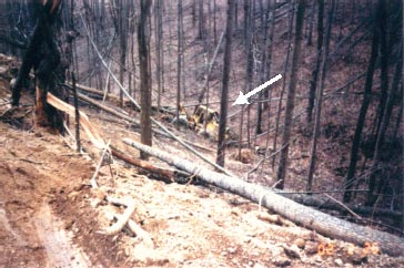 Figure 4. The arrow points to the skidder's final resting place.