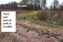 Figure 4. Lane ending at cornfield and turn to woodlot.