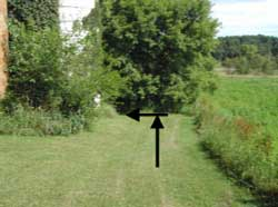 Figure 4. Path down to barn entrance.