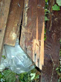 Photo 1. Damaged wood used to make the improvised scaffold.
