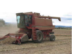 Photo 1. Combine in field (file photo)