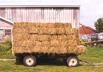Photo 1 – Side view of the loaded hay wagon at rest on nearly flat ground in the farmyard.
