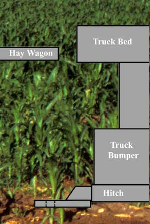 Diagram 1 - Shows the relative positions of the truck and hay wagon per measurements taken by Sheriff's investigators.