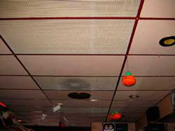 Figure 2. Ceiling panels in bar area.