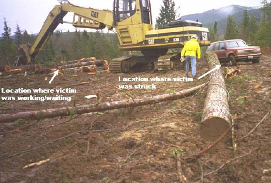 Photograph 3. The event site and log that struck the worker.