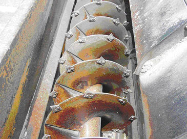 Auger portion of the feed mixer-grinder. Note the razor-blades mounted on the auger to facilitate cutting/grinding.