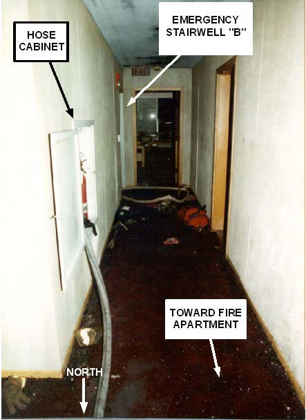 Photo 3. View of Hallway Leading Toward Emergency Stairwell