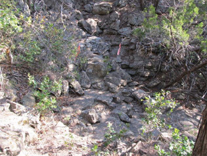 photograph of the trail where the FF was found unconscious