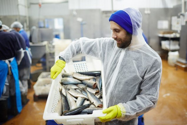 Seafood processing worker transporting fresh mackerel while the production line prepares fish in the background.