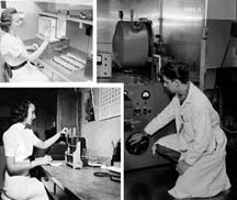 Composite photo of three laboratory workers
